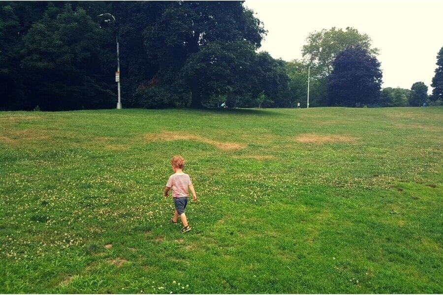 פרוספקט פארק ברוקלין בשכונת פארק סלופ. באמאשלי