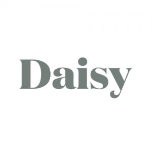 daisy new york