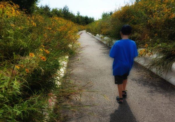 טיול יום Governors Island